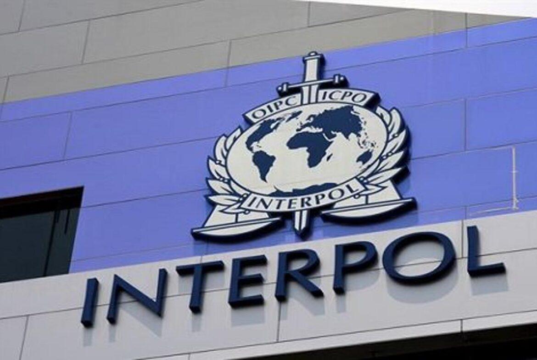 Podrška državnim službenicima Odsjeka NCB Interpol